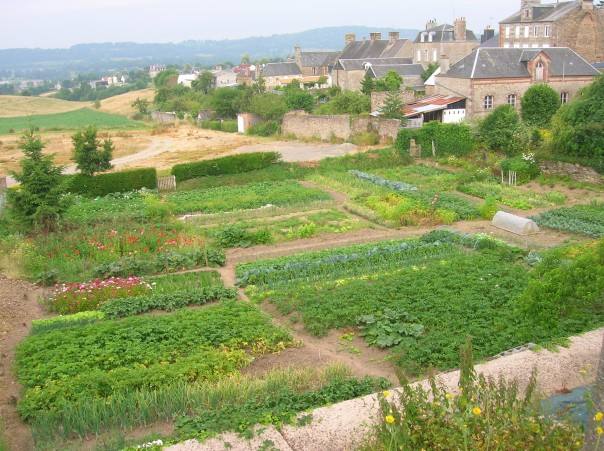 O gradina potager in Normandia in vara anului trecut