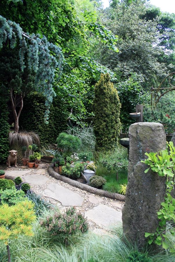 The Pine & Conifer Enthusiast Garden a avut numai 20 metri patrati